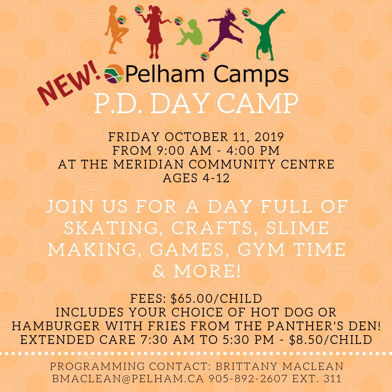 pd day camp poster