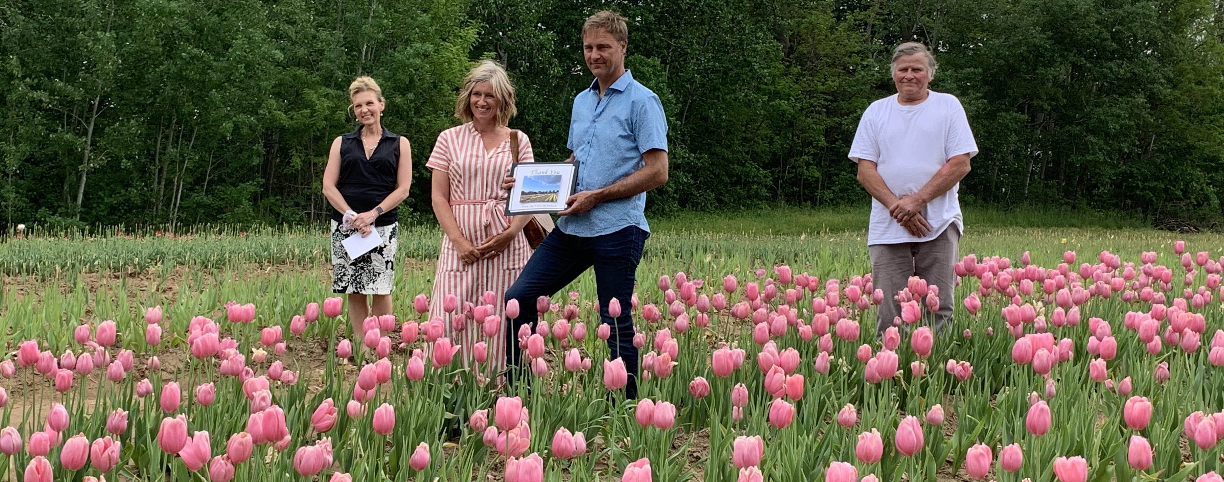 people standing in tulip field