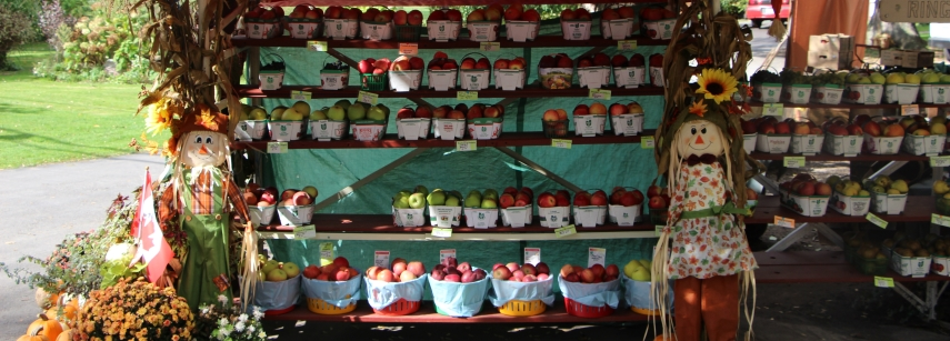 A stall selling fresh fruit