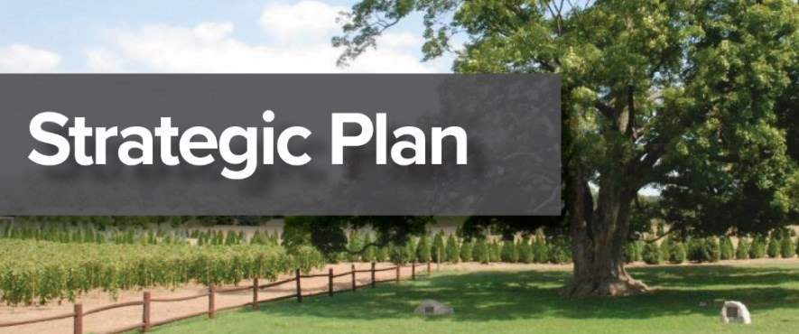 strategic plan text in front of image of tree